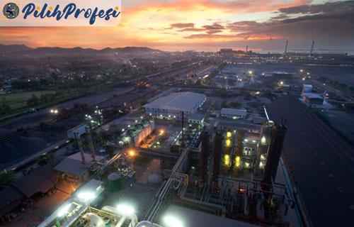 Gaji Direktur Krakatau Steel Terbaru