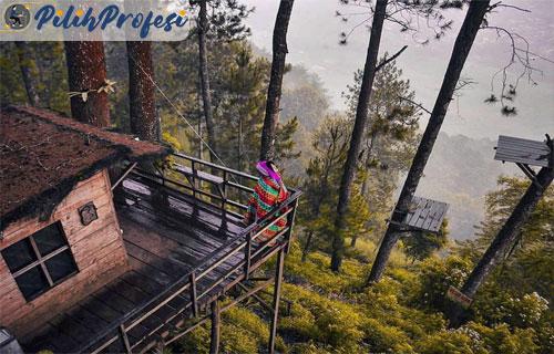 Wisata-Rumah-Pohon-di-Batu-Malang
