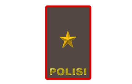 Brigadir Jendral Polisi – Brigjenpol