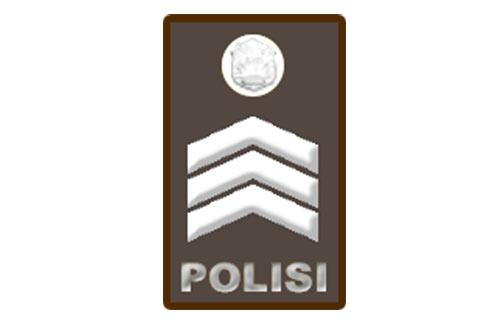 Brigadir Polisi – Brigpol
