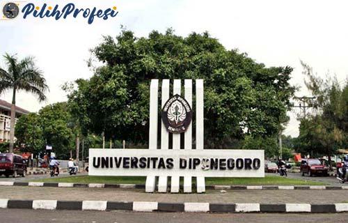 Universitas Diponegoro 1