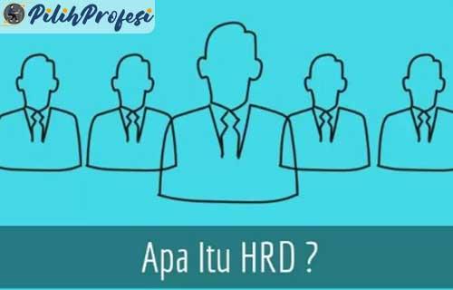 Apa Itu HRD Dalam Perusahaan Lengkap Dengan Pengertian Tugas dan Fungsinya