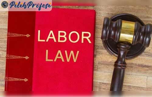 Undang Undang yang Mengatur Mengenai Pengangkatan Karyawan