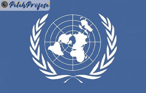 Apa Itu PBB