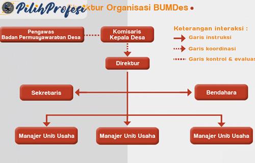 Struktur Pengurus BUMDes