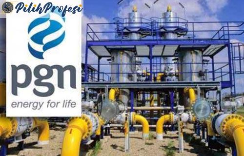 Sekilas Tentang Perusahaan Gas Negara