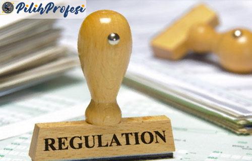 8. Regulasi Pemerintah